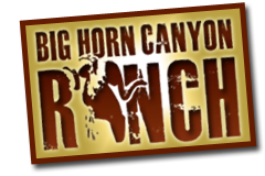 Big_Horn_Logo_sm_web_stamp